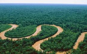 Daftar Sungai Terpanjang Di Indonesia Yang Perlu KamuTahu