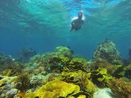 Taman Laut Tumbak