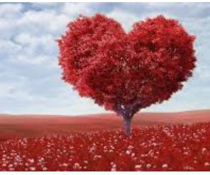 1041 Kata Kata Cinta Yang Dalam Dan Penuh Arti Woazycom